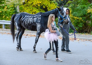 southport-parade-halloween-2014-136